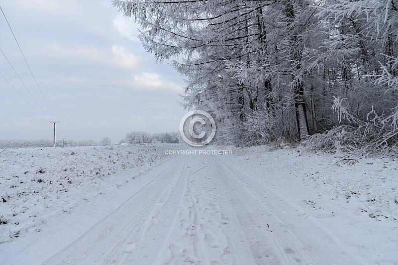 Eine verschneite Straße am Wald