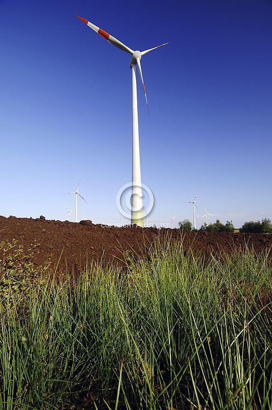 Windkraftanlage mit Gräsern