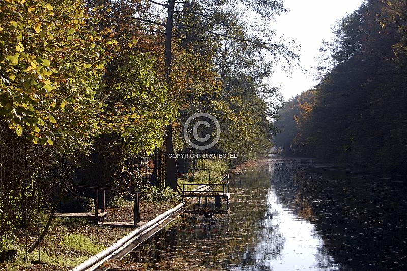 Herbstlich gefärbte Baume am Ems-Hase-Kanal