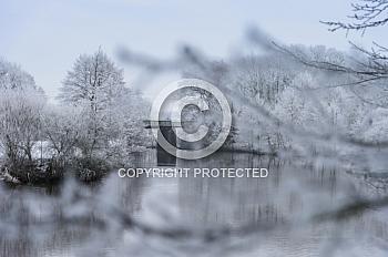 Eine Winterlandschaft am Wasser mit Schnee und Bäumen