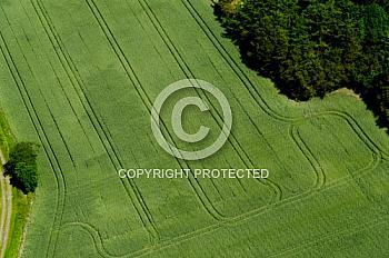 Luftaufnahme von einem Feld in Nordhümmling