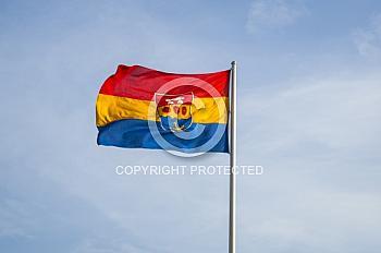 Im Wind wehende Flagge mit dem emsländischen Wappen