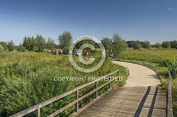 Brücke im Hasetal und Fahrradfahrer