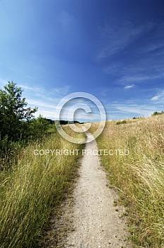 Weg durch Graslandschaft