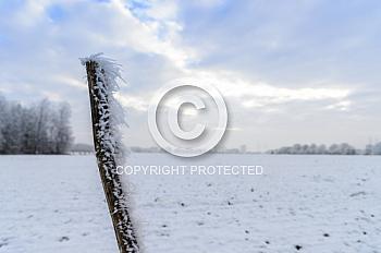 Eine Aufnahme einer Winterlandschaft