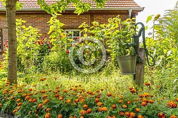 Garten in Thuine