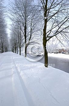 Allee im Schnee