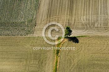 Luftaufnahme von einem Acker in Nordhümmling