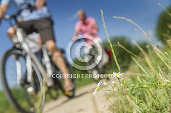 Fahrradfahrer auf Feldweg