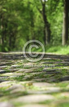 Historische Straße bei Berßen