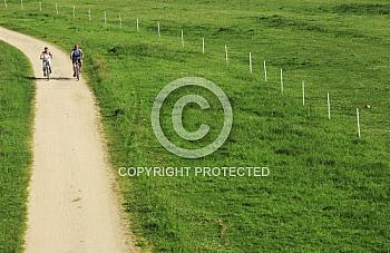 Radweg durchs Grün