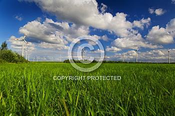 Graslandschaft mit Windkrafträdern